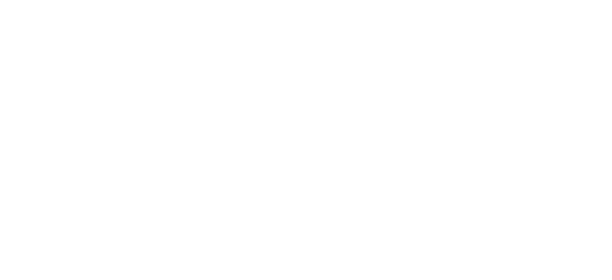 Intrepid Capital